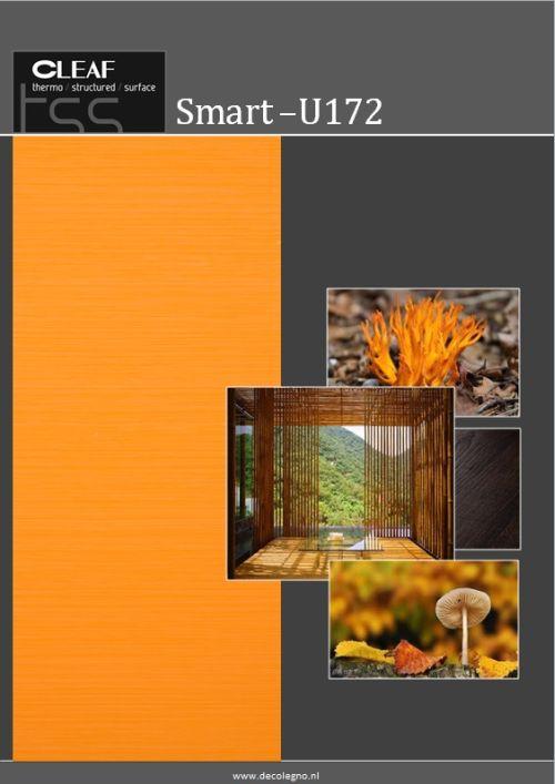 VRI interieur: moodboard Decolegno structuur Smart U172